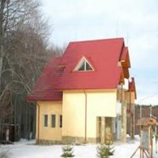Ремонтирани покриви от нас